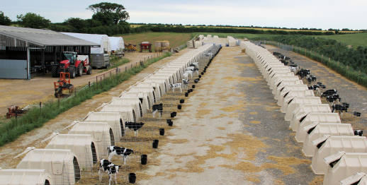 Calf hutches from Intershape