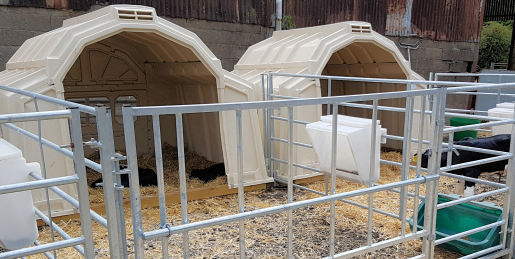 Group Calf Hutches - the Multimax from Calf-Tel