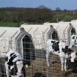 More about individual calf hutches