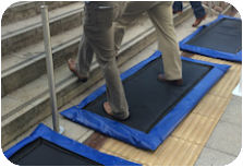 Disinfectant Mats For Disinfection Of Personnel Animals