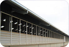 Automatically ventilated dairy youngstock housing